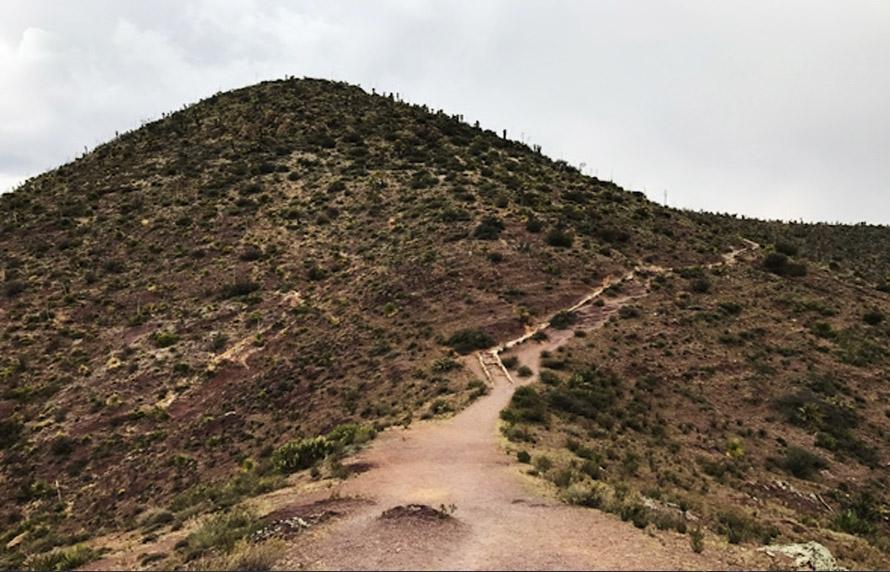 Visita a la Montaña Sagrada Wirikuta